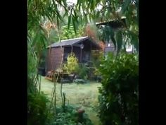 (74) Permaculture Garden Bealtaine Cottage in the West of Ireland - YouTube