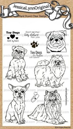 JessicaLynnOriginal AKC Dog: Toy Dog Clear Stamp {Pug, Pomeranian, Chihuahua, Affenpinscher, and a Yorkshire Terrier} Pomchi Puppies, Pomeranian Chihuahua Mix, Tier Doodles, Alpha Dog, Animal Doodles, Puppy Biting, Custom Rubber Stamps, Colorful Drawings, Yorkshire Terrier