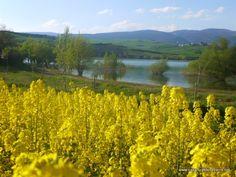 Disfruta del pantano de Alloz en Lerate Navarra