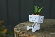 Robbie the Robot Planter How will you personalize cute Robbie the robot planter by styling his hair with succulents, herbs or cactus?