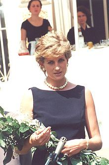 The Princess of Wales at The Leonardo Prize  Spouse Charles, Prince of Wales  (29 July 1981, div. 1996)[1]  Issue  Prince William, Duke of Cambridge  Prince Harry of Wales.