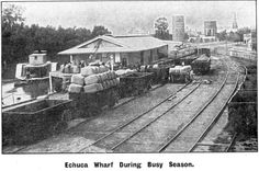 Another image of Echuca wharf c.1910. Rail trucks waiting for loading with wool bales. Melbourne Victoria, Victoria Australia, Carry Back, Murray River, Rail Car, Historic Houses, Steamer, Historical Photos, Paddle