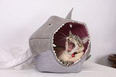 キャ~♪ にゃんこがサメに食べられちゃっている「サメ型ベッド」に萌え萌え警報発令!! / 「カツオだったら逆に食ってやるのニャ」とお気に召したご様子