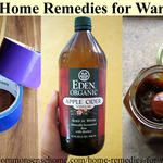 9 Home Remedies for Warts