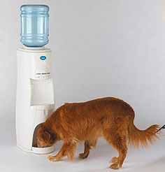 23 Best Water Cooler Images In 2013 Water Coolers Water
