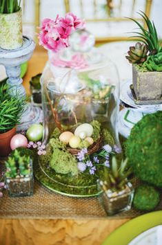 Bell Jar with Nest Centerpiece
