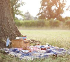 View top-quality stock photos of Picnic And Hamper Beside Tree In Meadow. Picnic Date, Summer Picnic, Summer Kids, Spring Summer, Beach Day, Beach Trip, Picnic Blanket, Outdoor Blanket, Outdoor Dates