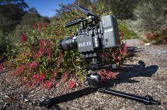 RED Epic-X run & gun macro rig - 105 Micro Nikkor + Really Right Stuff Ground Pod, ball head and focusing rail…