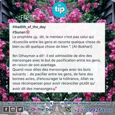 Allah va vous récompenser pour avoir réconcilier #sonan #prophète #muhammad #français #tip_of_the_day #life #daily #sunan #teachings #islamic #posts #islam #holy #quran #good #manners #prophet #muhammad #muslims #smile #hope #jannah #paradise #quote #inspiration