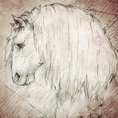 """Andalusian Head"" Detail of a Da Vinci style drawing"