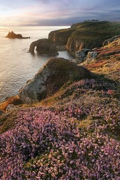 Evening Blush, Land's End - Cornwall, England.