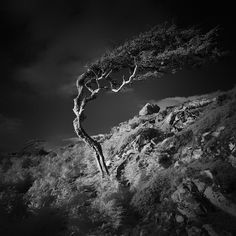 Great Landscape Photos Awarded in Monochrome Awards 2014 | MONOVISIONS