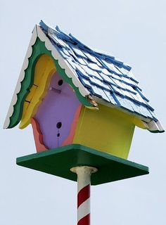 .Birdhouse (unusual)