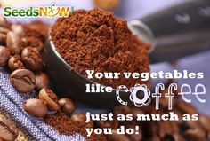 Your Vegetables Like Coffee, Just As Much As You Do!
