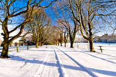 Beautiful, scenic photo opportunities to be had on the private, 310 acre Island Waterford Castle, Castle Hotels In Ireland, Winter Season, Lodges, Winter Wonderland, Acre, Island, Outdoor, Beautiful
