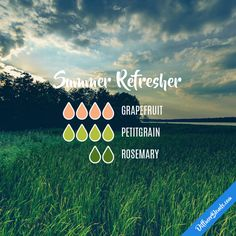 Summer Refresher - Essential Oil Diffuser Blend