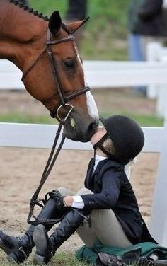 Horse love to it's little equestrian Pretty Horses, Horse Love, Beautiful Horses, Animals Beautiful, Cute Animals, Horse Pictures, Horse Photography, Show Horses, Horseback Riding