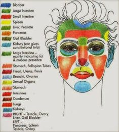 An interesting diagram that shows what can cause acne on different areas of the face.