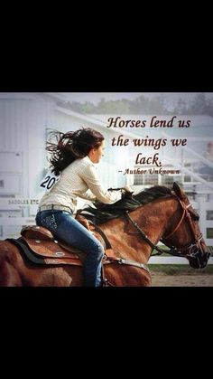 Horses.  Riding a horse you love is like flying.  Flying free, where no one else is but you and your best friend.  Let the whole world melt away.