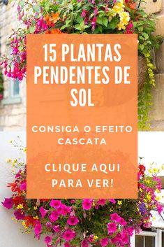 Small Backyard Gardens, Backyard Garden Design, Eco Garden, Garden Plants, Plantas Bonsai, Mexican Home Decor, Interior Garden, Green Life, Vegetable Garden
