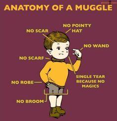haha I love Harry Potter