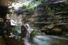 ozark stream exhibit - oklahoma aquarium