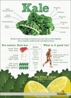 All Hail Kale! (Infographic) All Hail Kale! (Infographic) By Jason Wachob Did you know that kale has more iron than beef? Or more calcium than milk? These are just a few of the interesting facts in this infographic on kale from nutribullet. Get Healthy, Healthy Tips, Healthy Choices, Healthy Foods, Healthy Recipes, Healthy Soup, Healthy Weight, Healthy Plate, Healthy Herbs