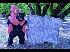 SoUnD WaVeS- meets KoKo (Short film) - YouTube