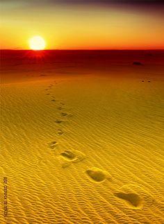 ~~Sunshine touches Rmala receives gold ~ desert lanscape, golden sunset, Saudi Arabia by mzna al. khaled~~