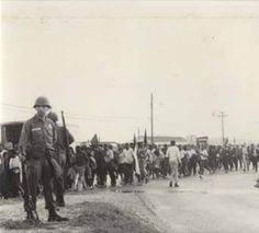 Marchers in Montgomery during the Selma to Montgomery March. :: Alabama Photographs and Pictures Collection