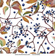 Autumn leaves with wild grapes, background. Autumn seamless watercolor pattern. fall