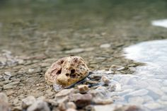 finienfotodesign - Fotokünstlerin Verena Maria - home http://verenamaria.format.com/#e-1 via format.com #natur #nature #wasser #water # Entspannung #finienfotodesign #verenamaria #stille #silence #portfolio #fotografie #photography #art