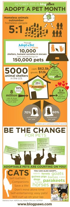 Pet adoption by the numbers http://www.blogpaws.com/2013/10/blogpaws-adopt-a-pet-infographic-available-to-blog.html