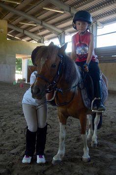 Riding Helmets, Pony, Horses, Animals, Fashion, Green, Pony Horse, Moda, Animales