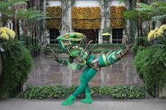 Green Basilisk Lizard, Annie Hickman's Costume art