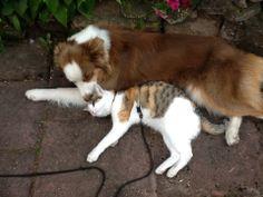 Stella und Liili