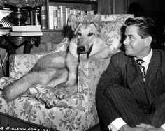 Glenn Ford with one of his beloved dog
