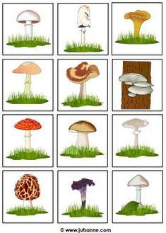 #kaikenlaisia #sienet #muita #kuviaSienet + kaikenlaisia muita kuvia Science For Kids, Science And Nature, Art For Kids, Crafts For Kids, Mushroom Art, Autumn Nature, Autumn Crafts, Nature Center, School Themes