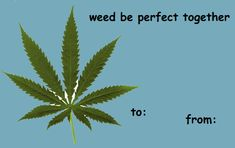Meme Valentines Cards, Hate Valentines Day, My Funny Valentine, Valentine Stuff, Valentine Wishes, Anime Pick Up Lines, Image Meme, Pick Up Lines Cheesy, Cute Messages