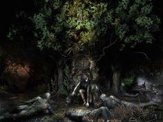 страшный лес - Pesquisa Google