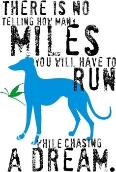 there is no telling how many miles you will have to run while chasing a dream. (greyhound)