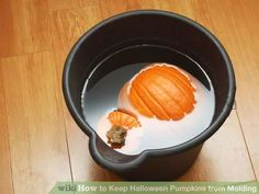 Image titled Keep Halloween Pumpkins from Molding Step 5