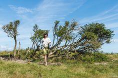 BLENDSCAPES Tree Dress Fashion Design: Elsien Gringhuis Photography: Tse Kao Model: Kelly Noa Estelle Concept: Elsien Gringhuis & Tse Kao