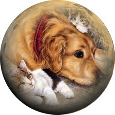 Мир рукоделия Лидии Костиной и не только...: Картинки с собачкамидля вашего творчества.