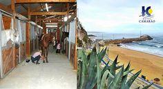 Promoção Exclusiva Escapadelas e Hotel Camarão na Ericeira, Experiência Equestre desde 75€ 2PAX | Mafra | Escapadelas ®