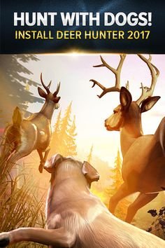 Hunt animals so real they nearly jump off the screen. Choose a hunting dog to be your companion, collect and customize your firearms and pursue trophies in unique and beautiful locations that span the globe. Install Deer Hunter 2017 and meet your new addiction.
