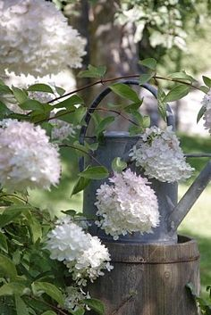 Love the old watering can on the primitive bucket...