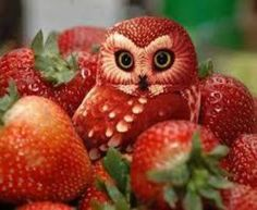 So many Peoples in the world are very creative and see the example of amazing funny fruit art. Believe it or not this funny cute owl is made of Strawberrys. L'art Du Fruit, Deco Fruit, Fruit Art, Fruit Food, Fruit Salads, Veggie Food, Funny Fruit, Funny Food, Red Owl