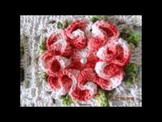 Tapete Flor de Camélia - YouTube