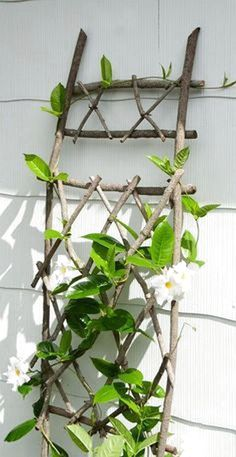Amazing Shed Plans - Handgefertigte Rankgitter Anlage nicht im von TenRodRoad auf Etsy Now You Can Build ANY Shed In A Weekend Even If You've Zero Woodworking Experience! Start building amazing sheds the easier way with a collection of shed plans! Diy Trellis, Garden Trellis, Trellis Ideas, Plant Trellis, Clematis Trellis, Garden Arbor, Garden Table, Flower Trellis, Wood Trellis